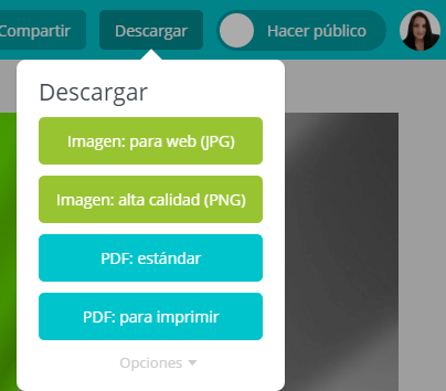canva para el iphone